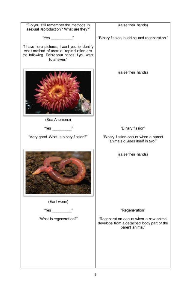 Ideas for Teachers