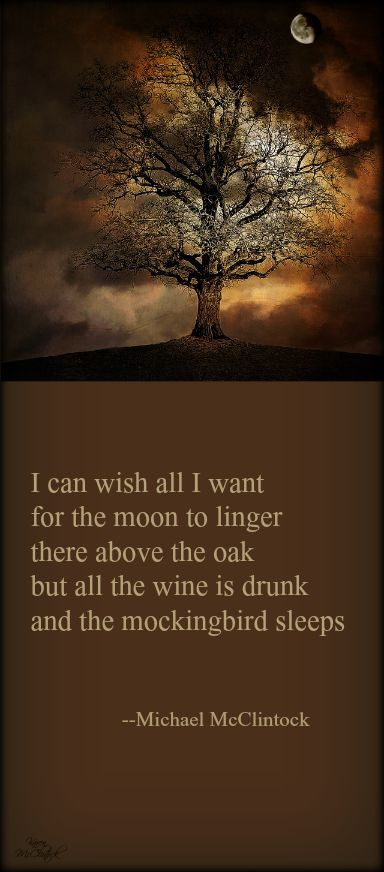 Tanka poem: I can wish all I want -- by Michael McClintock.