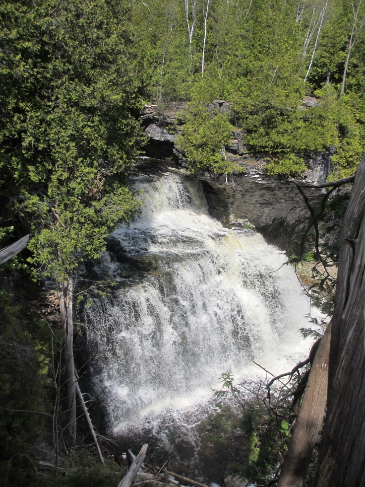 Jones Falls on the Bruce Trail