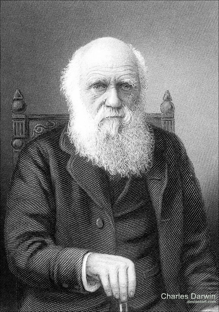 Charles Darwin made important contributions to marine biology by discovering many unknown organisms.