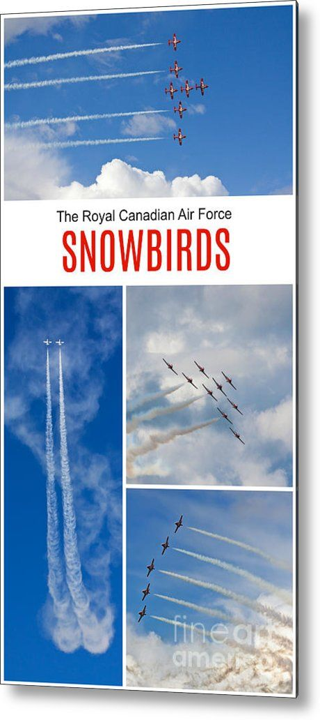 The Snowbirds Collage Metal Print  by Tatiana Travelways. The snowbirds performing an acrobatic flight demonstration in Ottawa. Also available as: canvas print, framed print, poster, metal print, acrylic print, wood print, greeting card and more... #Snowbirds
