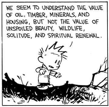 We seem to understand the value of oil, timber, minerals and housing but not the value of unspoiled beauty, wildlife, solitude and spiritual renewal