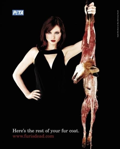 Zofia Konieczna: I think this is a really good way to shock people into stopping buying fur products, because most don't think about the whole process just the end product they receive. It's so sad to see helpless animals suffer for fashion snobs. I think the peta logo could be slightly bigger, however overall I think this is a really effective poster, it's certainly changed my opinion on fur. ____________________________ peta.org