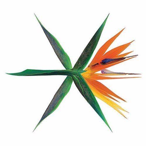 EXO | PARK CHANYEOL's photos – 205 albums | VK