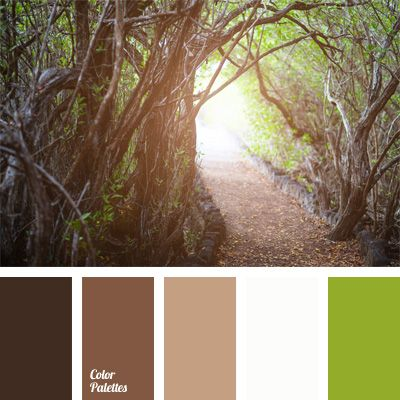 Natural Combination Of Warm Shades Of Brown And Green
