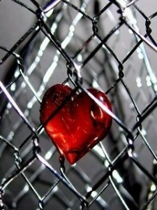 Caged Heart: Chainlink Fence, Chains Heart, Colors Photography, Splash Colors, Chicken Wire, My Heart, Colors Splash, Red Heart, Chains Link