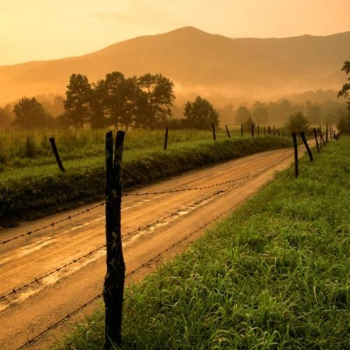 country road..: Cadescove, Country Roads, Favorite Places, Sunset, Cades Cove, Photo, Smoky Mountains