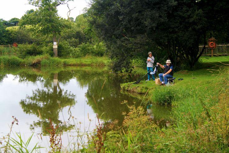 Free fishing at Meadow lakes holiday park, Cornwall