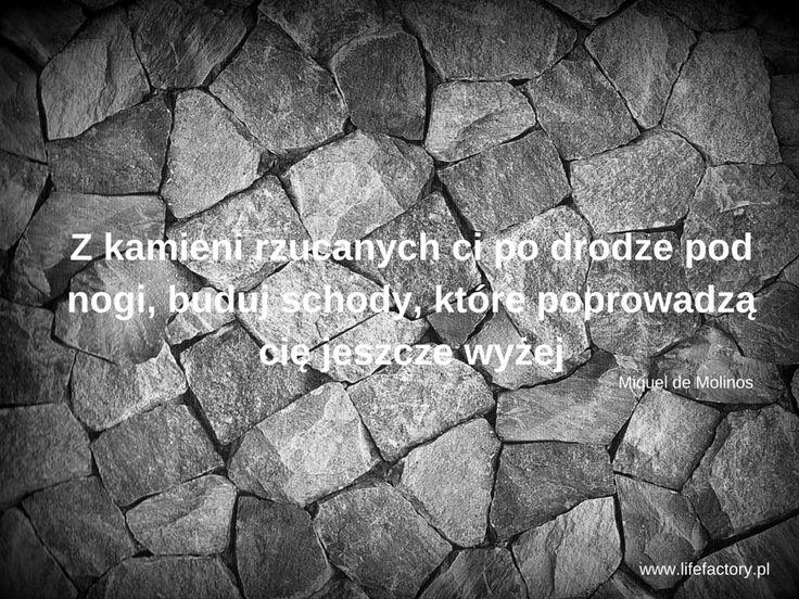 #lifefactory, #trudności, #sukces