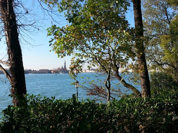 19/11/2014 ~ Biennale di Venezia 2014 | Foto del mare e nello sfondo la città