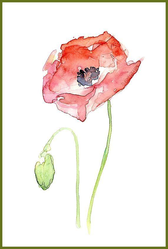Rote Mohnblume Blumen Kunst Malerei Der Aquarellmalerei Pflanzen Natur Mohnblumen Informationen Zu Rote Mohnblume Blumen Kunst Aquarellmalerei Mohnblumen Kunst
