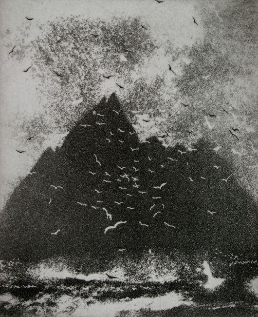 Chattering Birds- Norman Ackroyd Gannets on Little Skellig | etching 17x14.5 cm Gwen Hughes — Fine Art