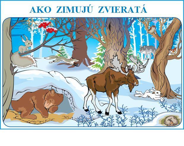 ako zimujú zvieratá
