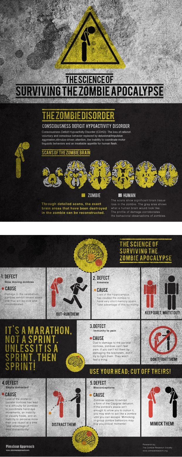 The Science Of Surviving The Zombie Apocalypse Visual Blog