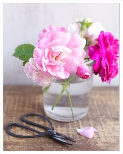 Conservare i fiori recisi