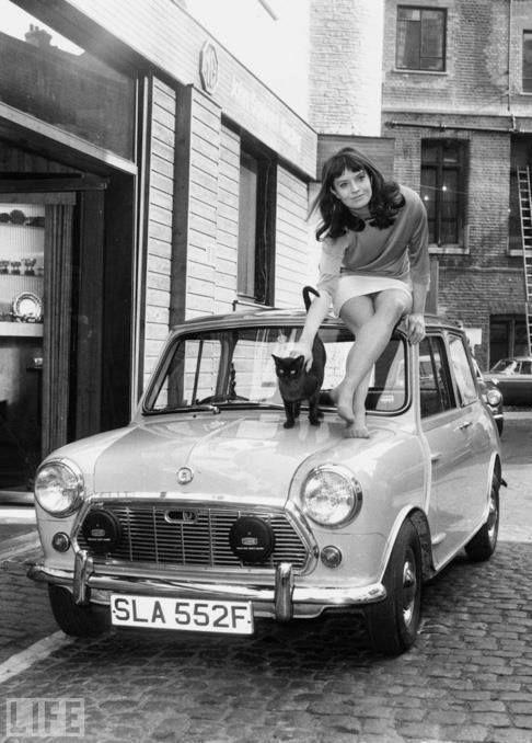 Fotka uživatele Auto Nostalgia - Targi Pojazdów Zabytkowych.