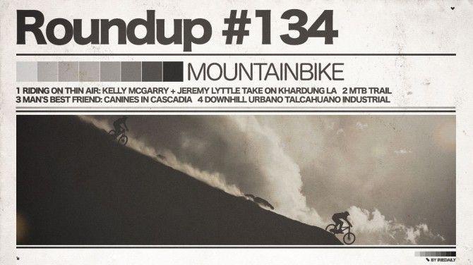 #134 ROUNDUP: Mountainbike – 35000 km! - IRIEDAILY