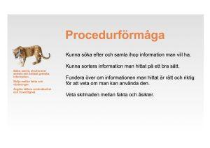 procedurformagaPlanschV3