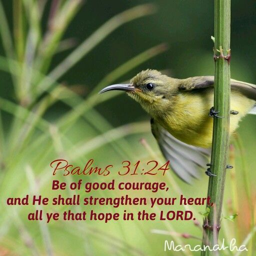 #Psalms 31:24 (KJV)  Be of good courage, and he shall strengthen your heart, all ye that hope in the LORD.  #MARANATHA
