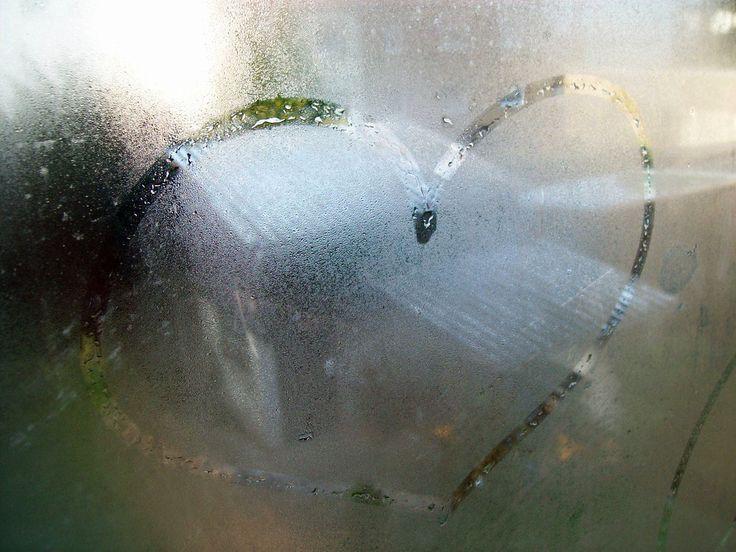 Der Verstand kann uns sagen, was wir unterlassen sollen. ... http://fc-foto.de/23332286