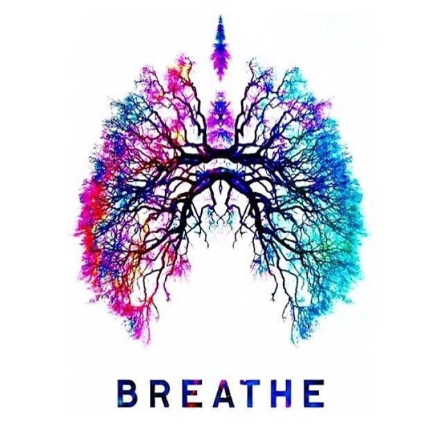 love the colour and graphical representation of the lungs