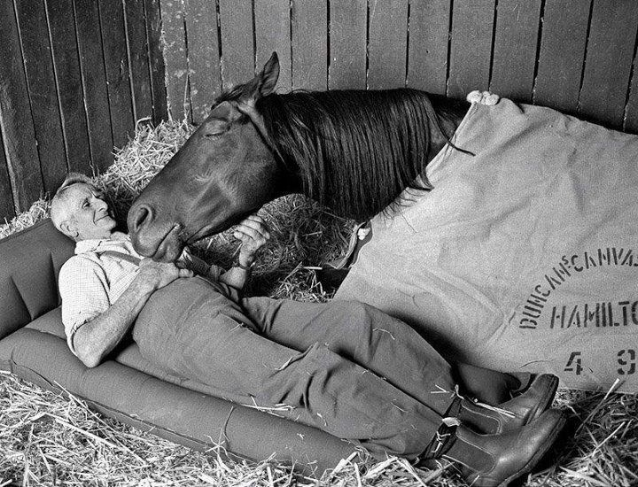 """Racehorse trainer Tommy Woodcock and his champion racehorse Reckless on the night before running second to Gold and Black in the Melbourne Cup of 1977.  """"Reckless had won the Sydney, Adelaide and Brisbane cups and the 73-year old trainer liked the stallion's chances in the 1977 Melbourne Cup. Horse and trainer died within months of each other in 1985."""