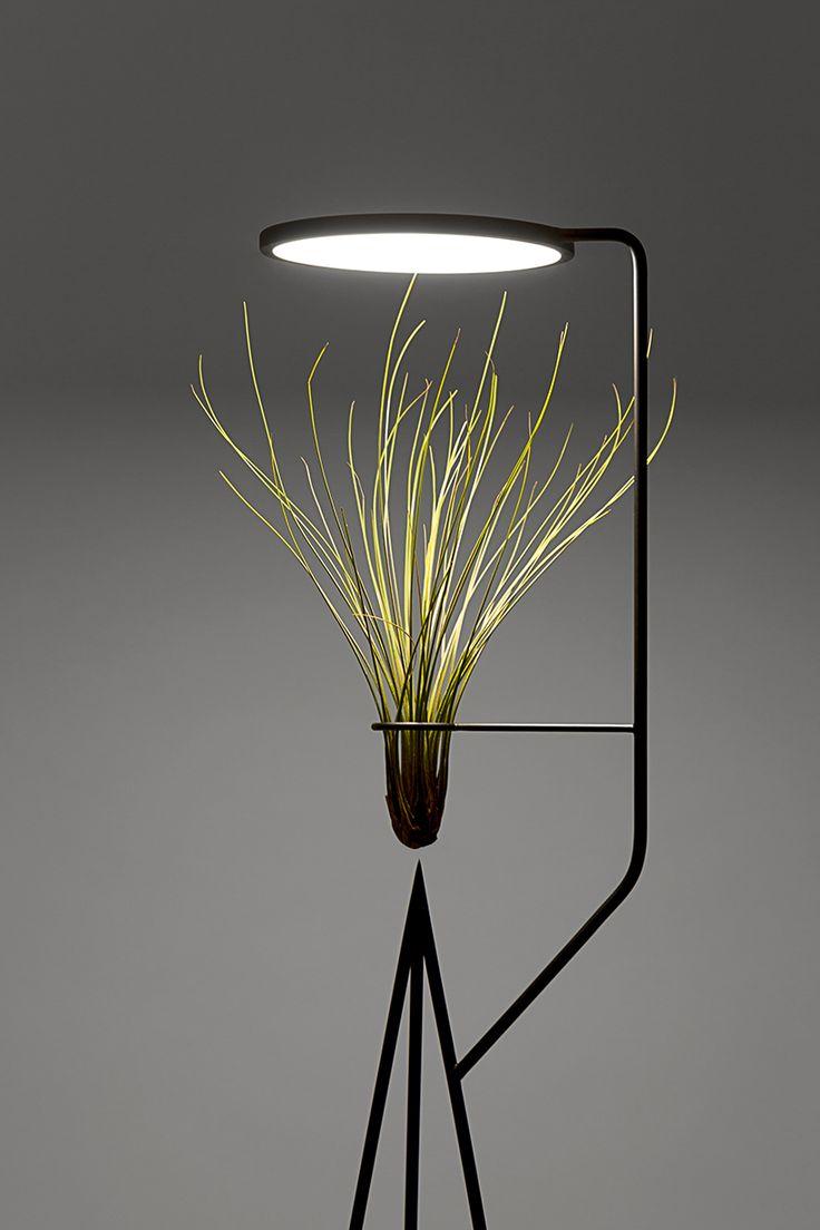 goula figuera viride plant plus lamp designboom