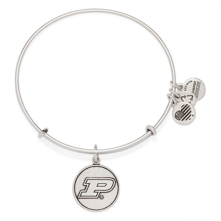 Purdue University Logo Charm Bangle | ALEX AND ANI In gold would be perfect.