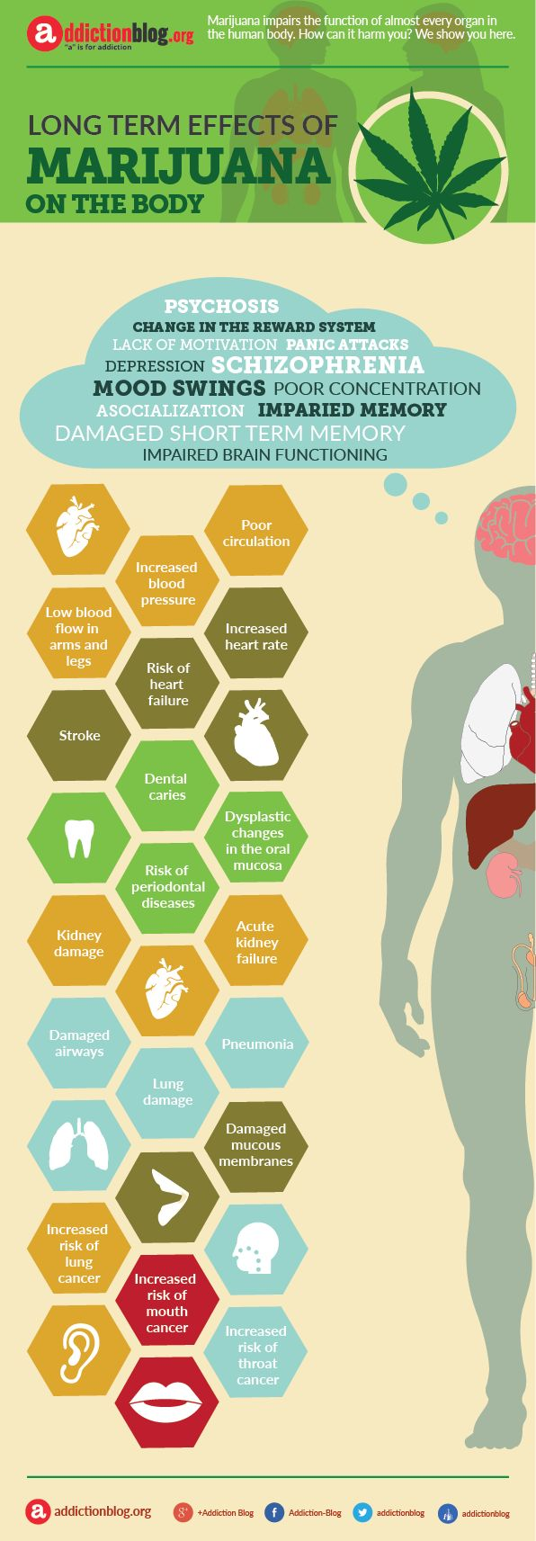 Long term effects of marijuana on your body (INFOGRAPHIC) | Addiction Blog
