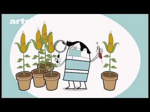OGM. Liste de questions. Comprehension