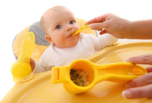 Presse aliments pour bébé The Wean Machine   La Mère Hélène