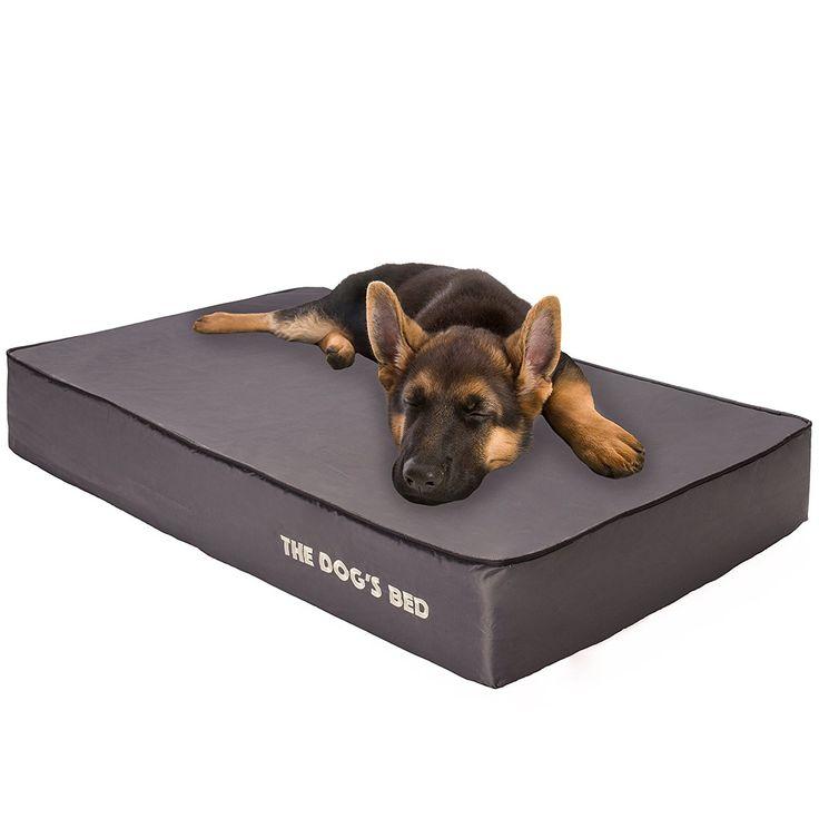 54 best cheap dog beds images on Pinterest | Cheap dog ...