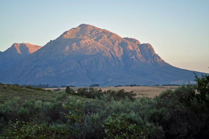 Cedarburg Mountains western cape