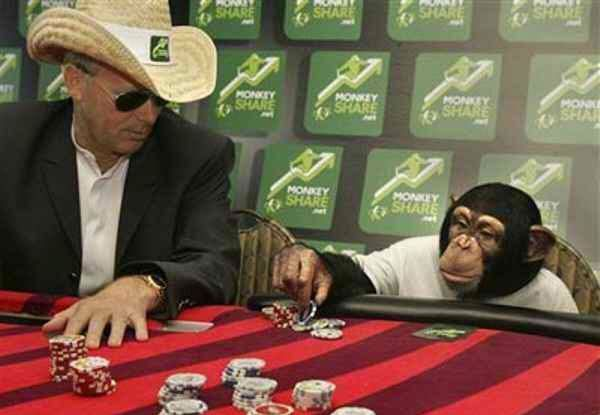 Even a monkey can play poker.