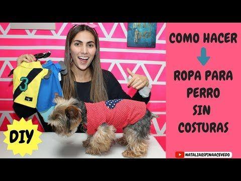 COMO HACER ROPA PARA PERRO - DIY - MASCOTAS - YouTube Shih Tzu, Dog Heaven, Barbie, Chihuahua Love, Diy Stuffed Animals, Pet Accessories, Dog Grooming, Pet Shop, I Love Dogs