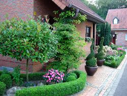 Gartenbuddelei: Interview