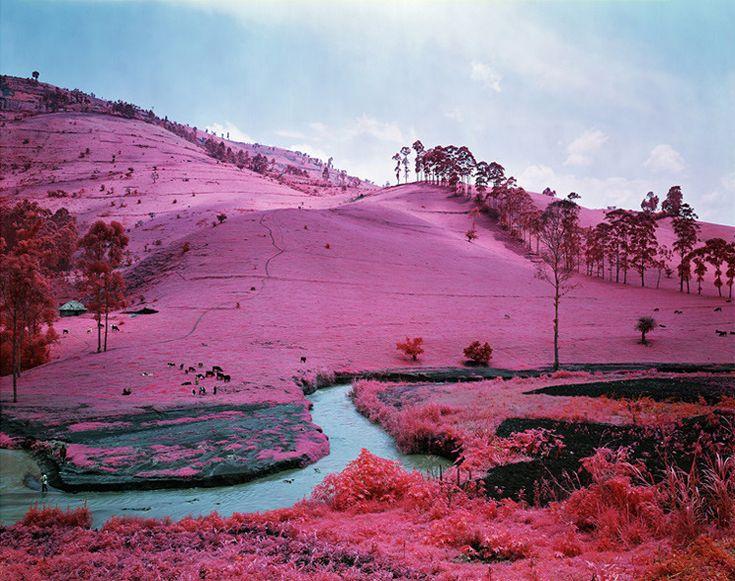 Le Congo en infrarouge//Richard Mosse a utilisé des pellicules de film Kodak Aerocolor, qui n'existe plus et était utilisé en photographie aérienne car en capturant la lumière infrarouge et en la rendant visible il permettait de distinguer plus facilement les changements de végétation, pour photographier le Congo avec ses paysages qui prennent des couleurs surréalistes et ses guerres encore visibles.
