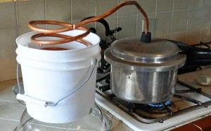 DIY Essential Oil Distiller using a pressure cooker, bucket, and copper tubing
