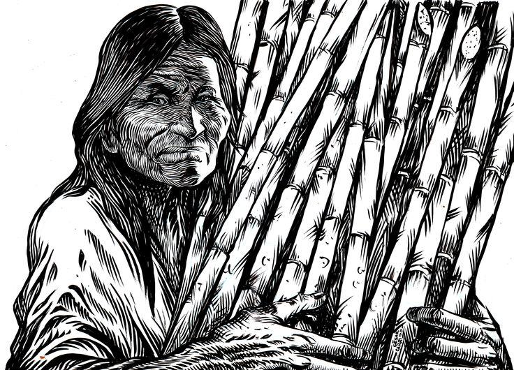 Zafrera del Tucumán Tinta china sobre papel