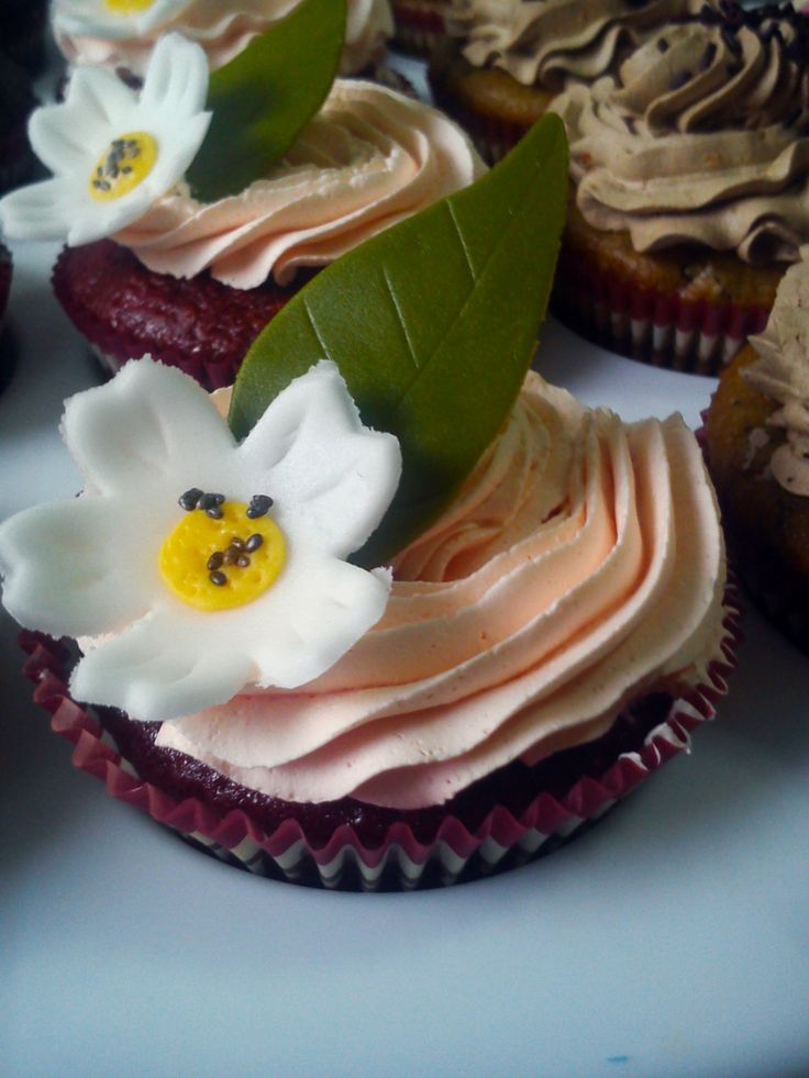 red velvet with passionfruit icing vegan cupcake!