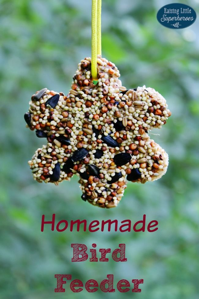 This Homemade Bird Feeder is a simple and fun activity for kids.  The birds love it too!