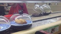 Rolling sushi!