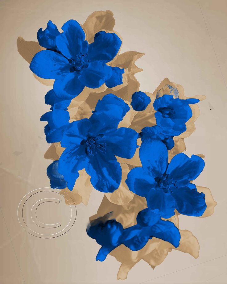Among Us in Canvas- Blue Floral Wall Art Photography Home Decor Picture Living Room Bedroom. Watermark will be removed from picture............................. Please remember that colors may vary slightly from monitor to monitor At your request, we will customize the decor color at no additional cost. ...............................................Matted-pictures.............We use professional non-glare Premium Luster photo paper Our 11 x 14 Mat has a 8 x 10 Photo in the center and…