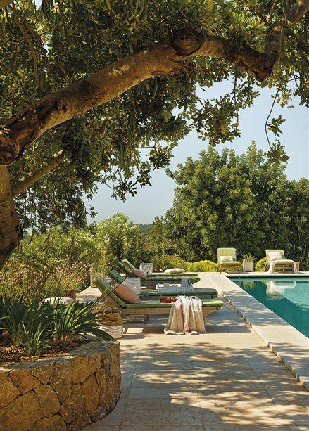 Tumbonas frente a la piscina y bajo los árboles