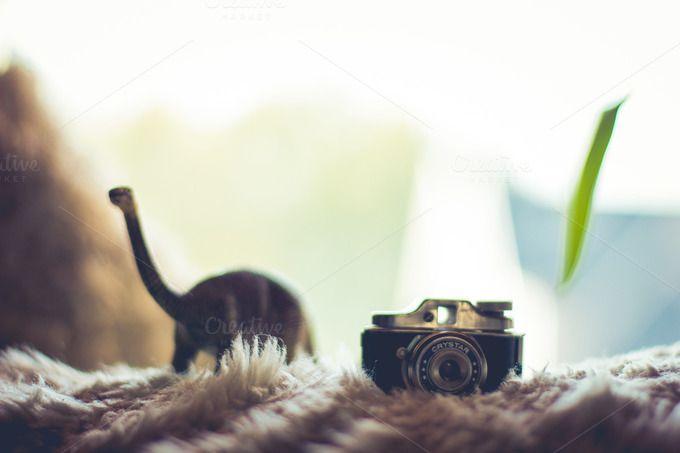 Dinosaur with a little camera by Farkas B. Szabina on Creative Market