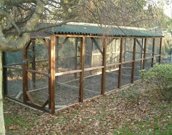Large chicken run 6x9 39 basic size options gardens for Chicken enclosure ideas