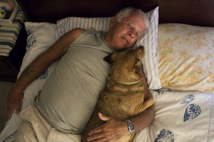 """World Press photo 2015, Portraits, 1st prizestories, Sofia Valiente MIRACLE VILLAGE 21 December 2013 Pahokee, Florida, USA Pahokee, Florida, USA Gene laying down for a nap with his dog Killer. """"Only a fool would truly trust anyone if you are a sex offender,"""" he says."""