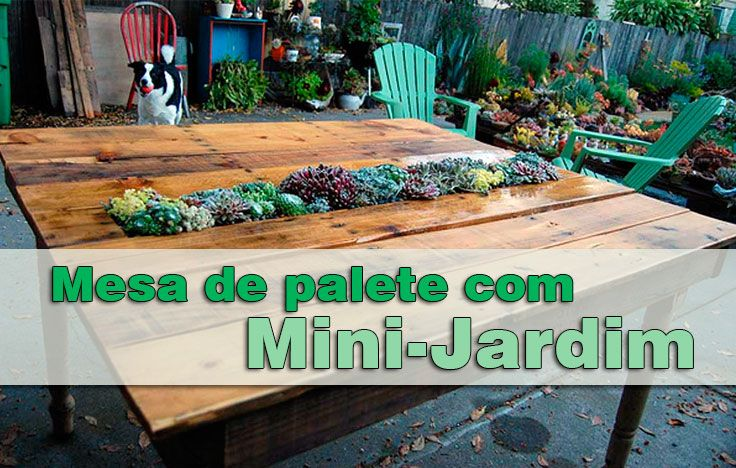 Construa uma mesa de suculentas com paletes de madeira. Esta mesa com um mini-jardim embutido, tornará o seu jardim ainda mais criativo.