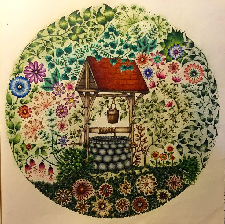 Well Secret Garden Poo Jardim Secreto Johanna Basford