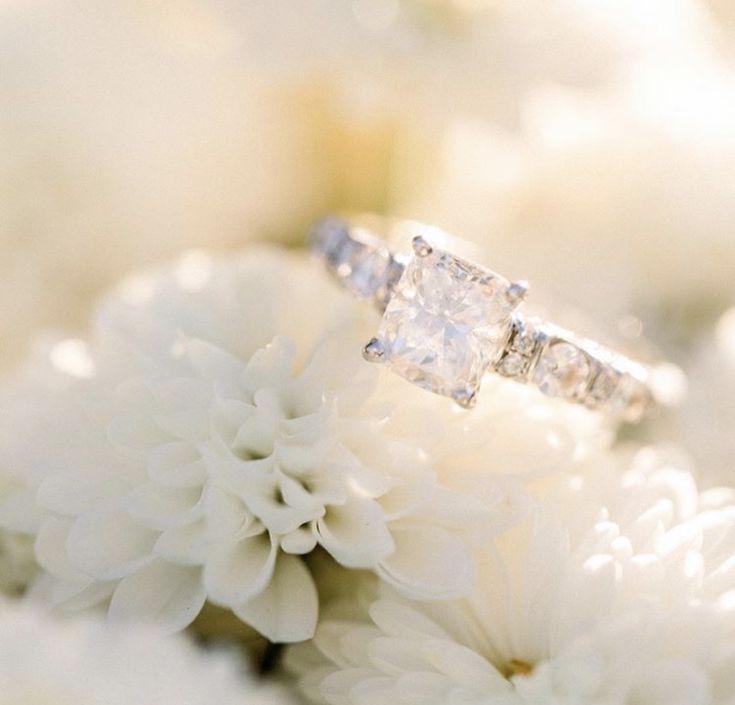 Classicwedding Rings Bobbydaleearnhardt.com